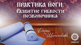 Йога для начинающих. Видео уроки. Практика йоги. Развитие гибкости позвоночника