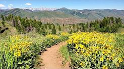 Adams Gulch Mountain Biking   Sun Valley, Idaho