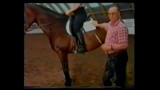 Конный спорт. Кизимов видео уроки. Седловка.