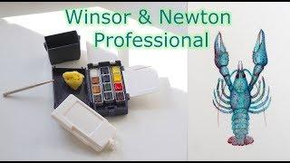 Походный набор акварели Winsor & Newton Professional || Рисую голубого рака