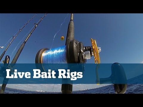 Live Bait Rigs Tuna Wahoo Kingfish - Florida Sport Fishing TV Rigging Station