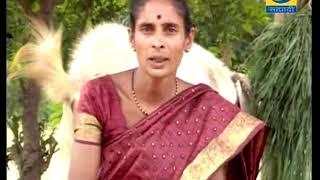 Amchi Mati Amchi Manse - 24 April 2018 - शेळी पालनातील नवीन वाटा मांसासाठी नर करडे पालन