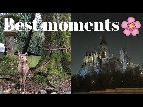 Part 2   Top 10 Favorite Moments in Japan   Nara, USJ, Kabuki Theatre