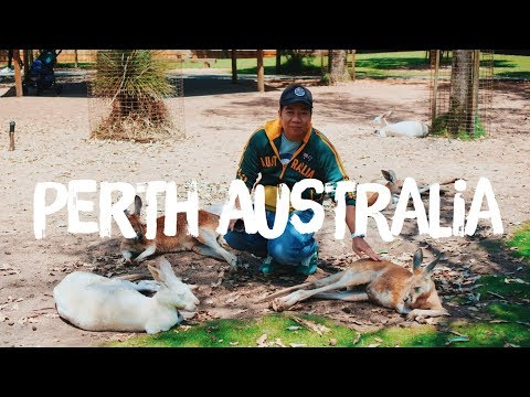 PERTH TRAVEL VLOG PART 3 | PERTH AUSTRALIA