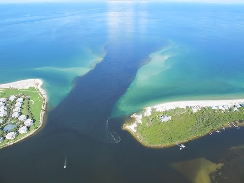 Algae Blooms, Our Estuary, and RECON
