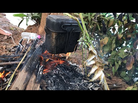 Cast Net Fishing|Very Traditionally Cook Rice And Grill Fish|Catch Up Fishes By Cast Net|Fishing Day