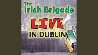 The Foggy Dew (Live)