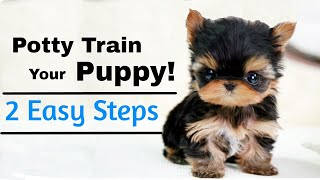 How to Potty Train A Puppy (2 EASY STEPS)