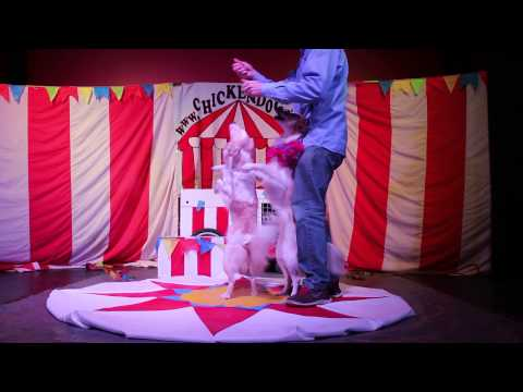 Circus Chickendog's Hurricane Katrina Dogs!