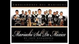 Sin Fortuna Mariachi sol de México