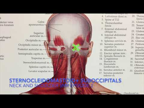 fix-your-upper-neck-and-shoulder-pain-+-headaches