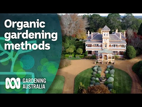 Organic gardening tips and tricks for big and small gardens   Organic methods   Gardening Australia