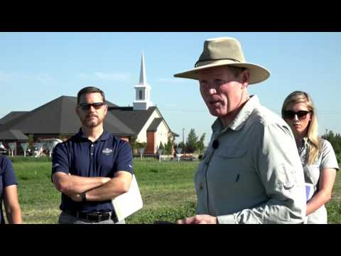 Plant nutrition for southern Alberta crops