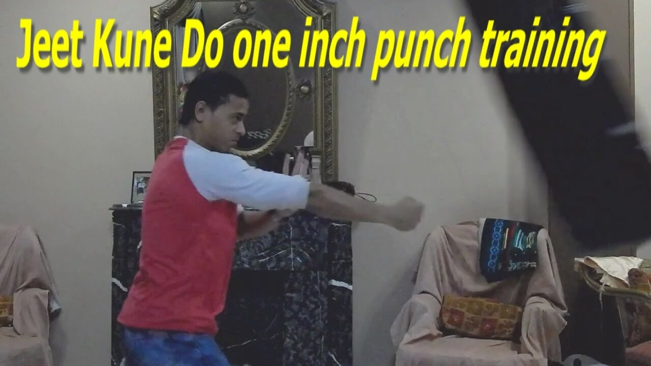 Jeet kune do punch