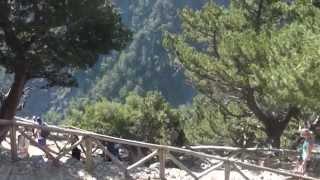 Ущелье Самарья с TEZ TOUR. Активный отдых в Греции, на острове Крит.(Видео посвящено экскурсии в ущелье Самарья и предлагается любителям насыщенного активного отдыха. В этой..., 2015-09-03T14:34:39.000Z)