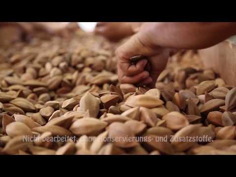 The Cracking Monkey Germany - Pili Nuts