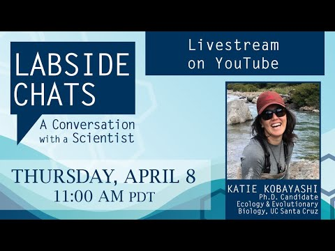 video:Labside Chats: A Conversation with a Scientist, featuring Katie Kobayashi, Ph.D. Candidate