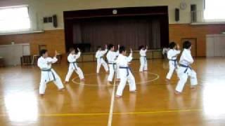 Wado-ryu Pinan-shodan Dantai Kata Practice.wmv