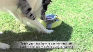 How To Make A Throwable Dispenser- Clicker Dog Training Tricks