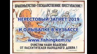 Нерестовый запрет 2019 и о Правилах рыбалки в Кузбассе