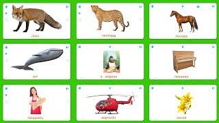 Карточки для детей - Животные, Рыбы, Буквы, Музыка, Профессии, Транспорт, Цветы - Карточки Домана
