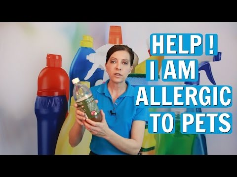 allergic-to-pets---house-cleaners-secrets-to-survival