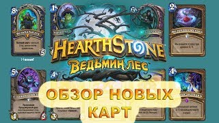 Обзор новых карт Ведьмин Лес Hearthstone (часть 1)