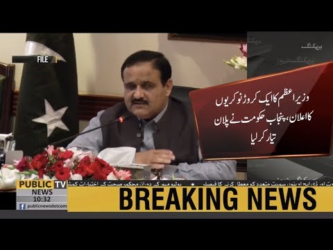 Punjab Govt all set to fulfill PM Imran Khan's promise of one crore jobs