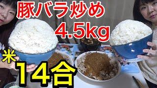 【大食い】食欲爆発!豚肉炒め!ご飯14合とともに!【双子】