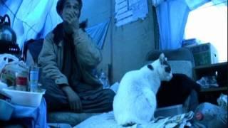 『ネコ と おっちゃん』 多摩川河川敷の物語 Part - 1