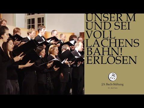 J.S. Bach - Cantata BWV 110 Unser Mund sei voll Lachens | 1 Choir (J. S. Bach Foundation)