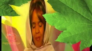 Sahra Siyaad - Tusa (If iyo Akhiro)