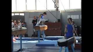 спортивная гимнастика 1 разряд конь