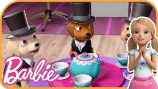 Chelsea&#39s Tea Party with Puppies  Barbie Dreamhouse Adventures 739  Budge Studios  HayDay