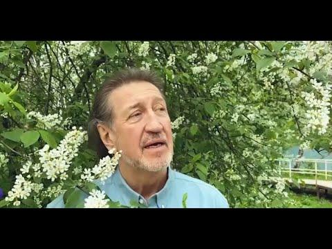 Смотреть клип Олег Митяев - Аннушка