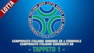 Tappeto 1