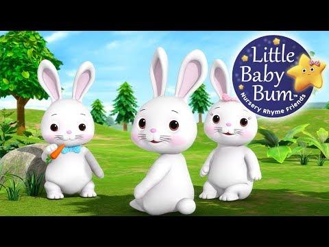 Bunnies Bunnies   Nursery Rhymes   Original Song By LittleBabyBum!