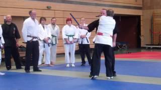 1 Würgen mit Stock HK-Ryu Stil