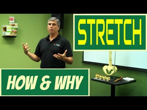 How and Why to Stretch * The Essentials of Stretching by Dr. Lee Pierce