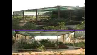 Farm for rent and sale in Kuwait