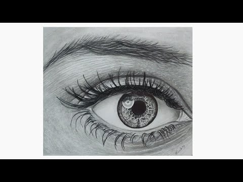 How to draw realistic eye and eyebrow / step by step ...