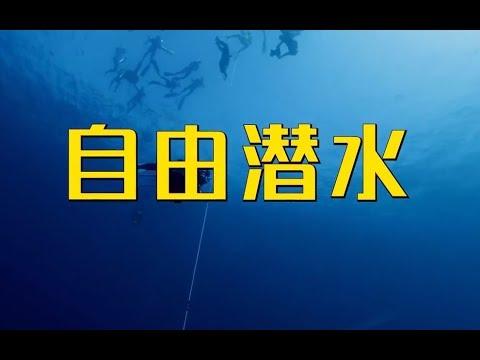 体育二三事:自由潜水