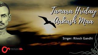 तमारा ह्रदय आकाश माँ | ऐसा  भजन जो हृदय को छू जाय  | Soulful Bhajan | Ritesh Gandhi