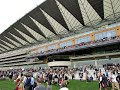 7/2 @ 5/1 LAST 2 FREE BETS STORM IN TODAYT GOODWOOD GAMBLE AS HH GOES FOR 3 IN A ROW + ASCOT SPECIAL