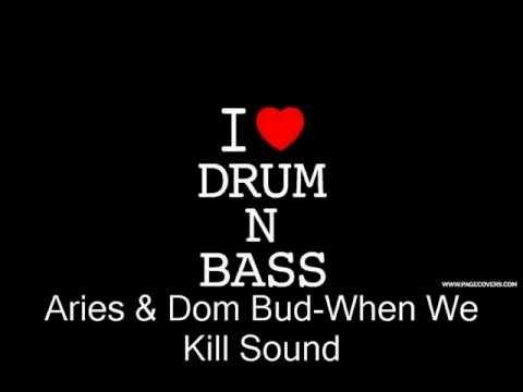 Aries & Dom Bud-When We Kill Sound