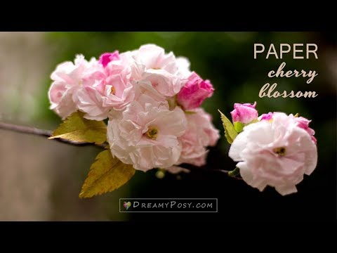 How to make paper cherry blossom from facial tissue