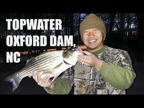 TOPWATER FISHING BEGINNER'S GUIDE: OXFORD DAM, NORTH CAROLINA