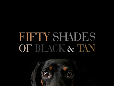 Fifty Shades of Black & Tan - Official Dachshund Trailer