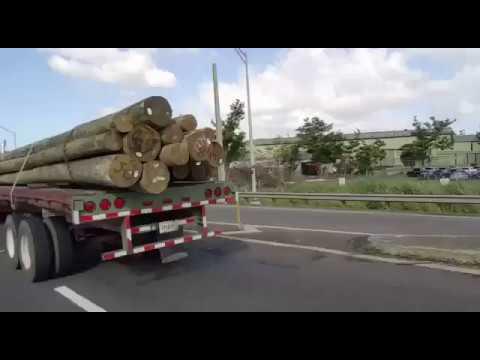 Postes de madera para restablecer la electricidad en - Postes de madera ...