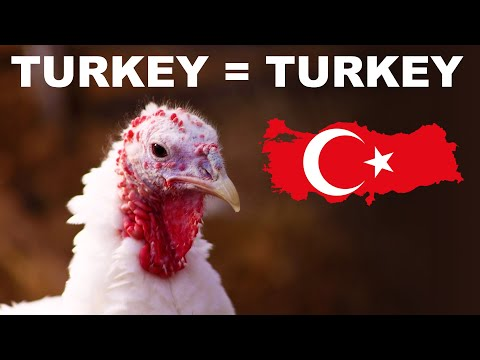 Why the turkey is named after Turkey (and India)